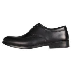 کفش مردانه رادین کد 06