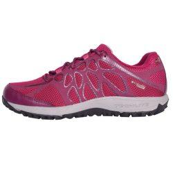 کفش مخصوص دویدن زنانه کلمبیا مدل conspiracy titanium outdry