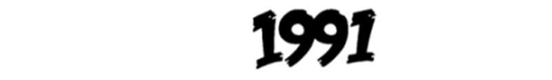 لباس مارک ایرانی 1991 اس دبیلیو