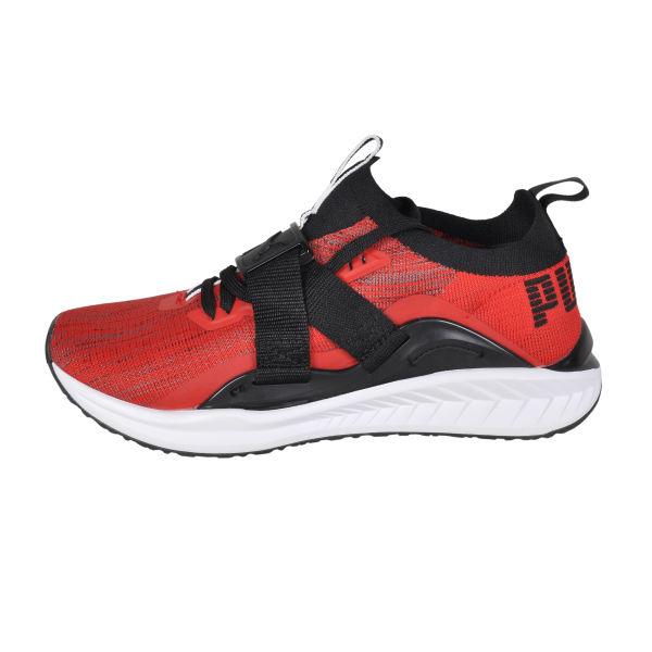 کفش پیاده روی پوما مدل IGNITE evoKNIT Lo 2